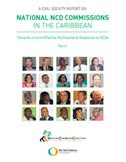 A Civil Society Report on National NCD Commissions