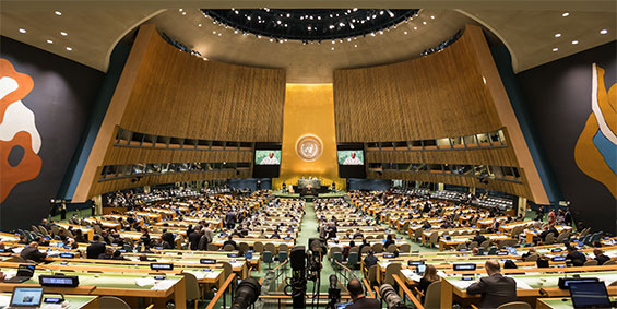 UNGA Prepares for Three High-level Meetings on Health