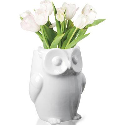 Vaas Owl Uil Invotis