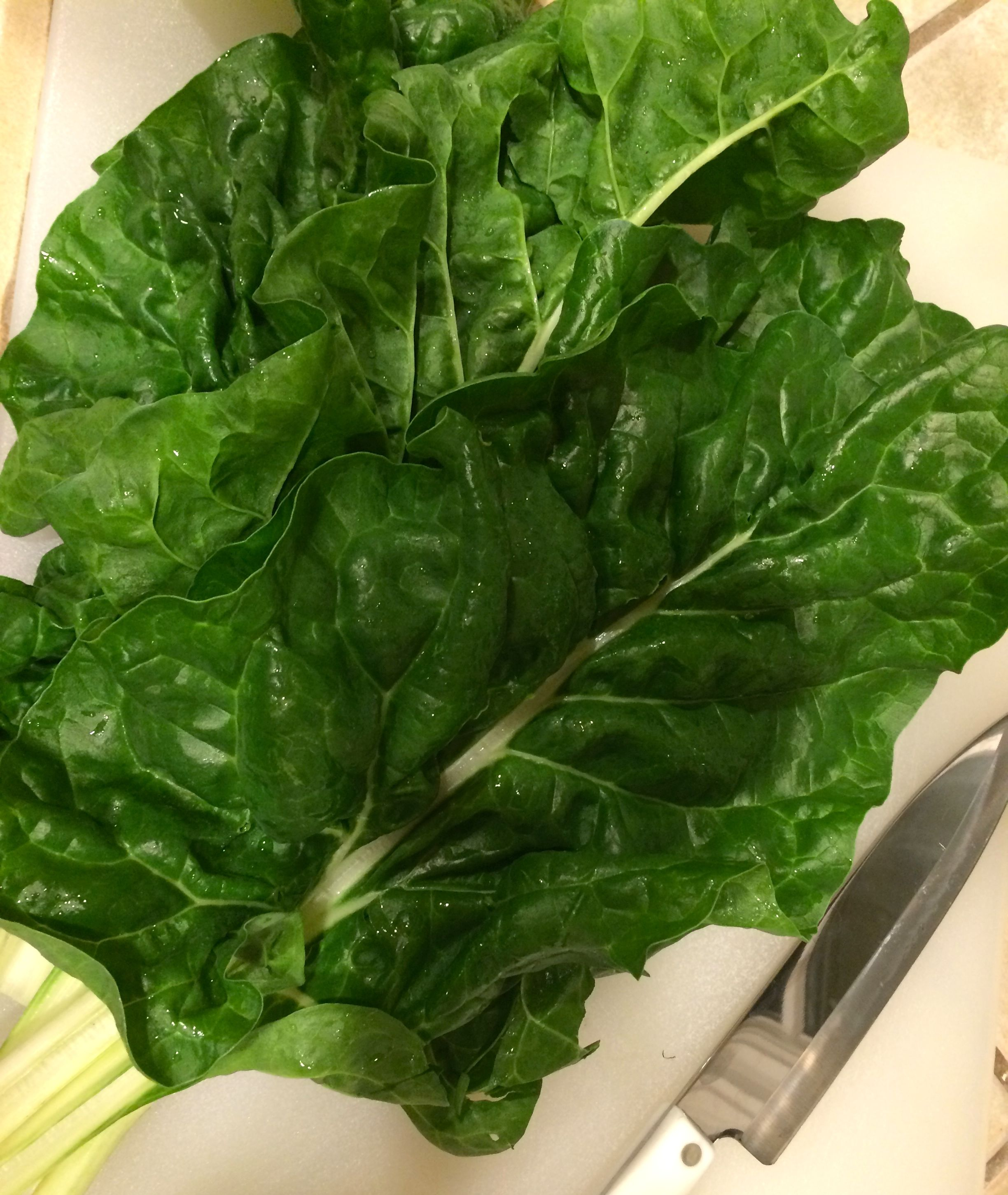 Fresh Swiss chard leaves