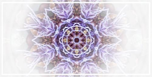 Magical Manifesting Mandala