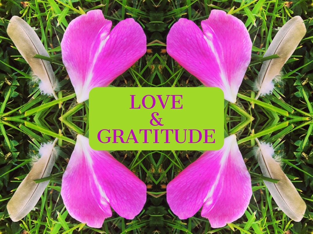 Limited Time & Space Gratitude Acupressure Special