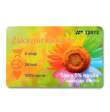 Plastové karty s čipem