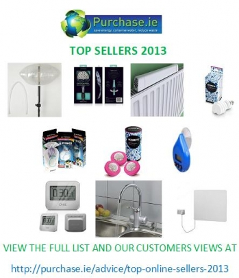 Top-Product-Sellers-2013