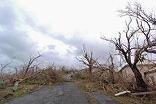 Virgin Islands - National Park Service Photo