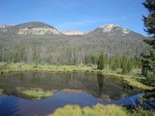 Rocky Mountain National Park - Beaver Pond