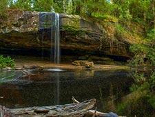 Lower Kalimna Falls, Great Otway NP