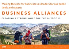 Business Alliances Book