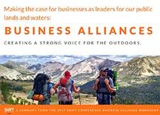 Business Alliances Book