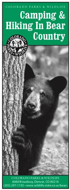 Bear Country Brochure