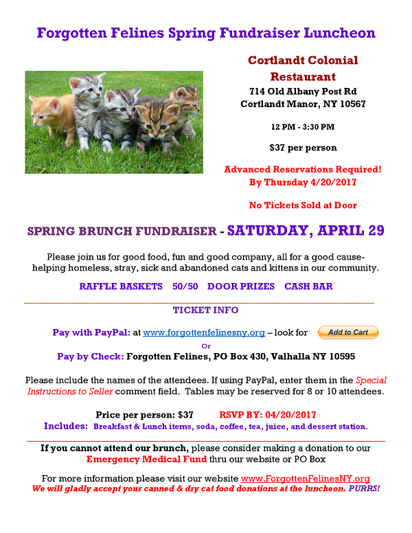 2017 Spring Fundraiser Luncheon
