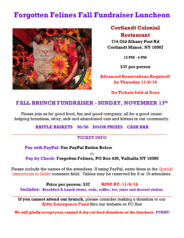 FF 2016 Fall Fundraiser Luncheon