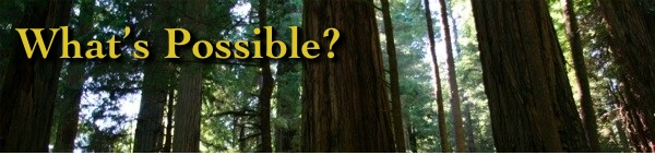 Receive the What's Possible? Newsletter