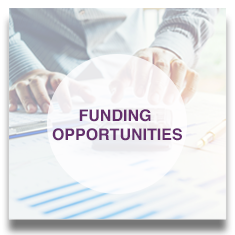 View Funding Opportunities button