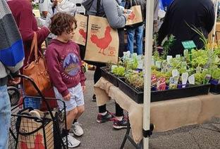 Adelaide Showground Farmers Market