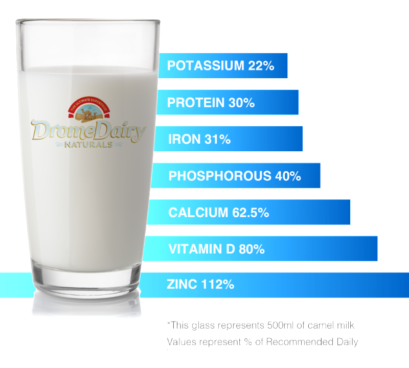 Potassium 22% - Protein 30% - Iron 31% - Phosphorus 40% - Calcium 62.5% - Vitamin D 80% - Zinc 112% *This glass represents 500ml of camel milk. Values represent % of Recommended Daily.