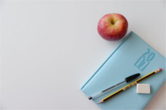 Image of 2017 notebook for school with an apple.