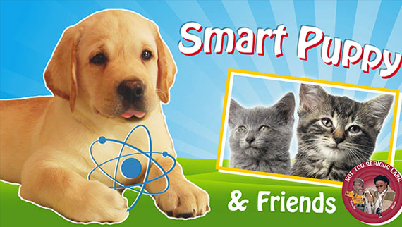 Smart Puppy and Friends