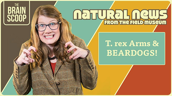 Natural News From The Field Museum