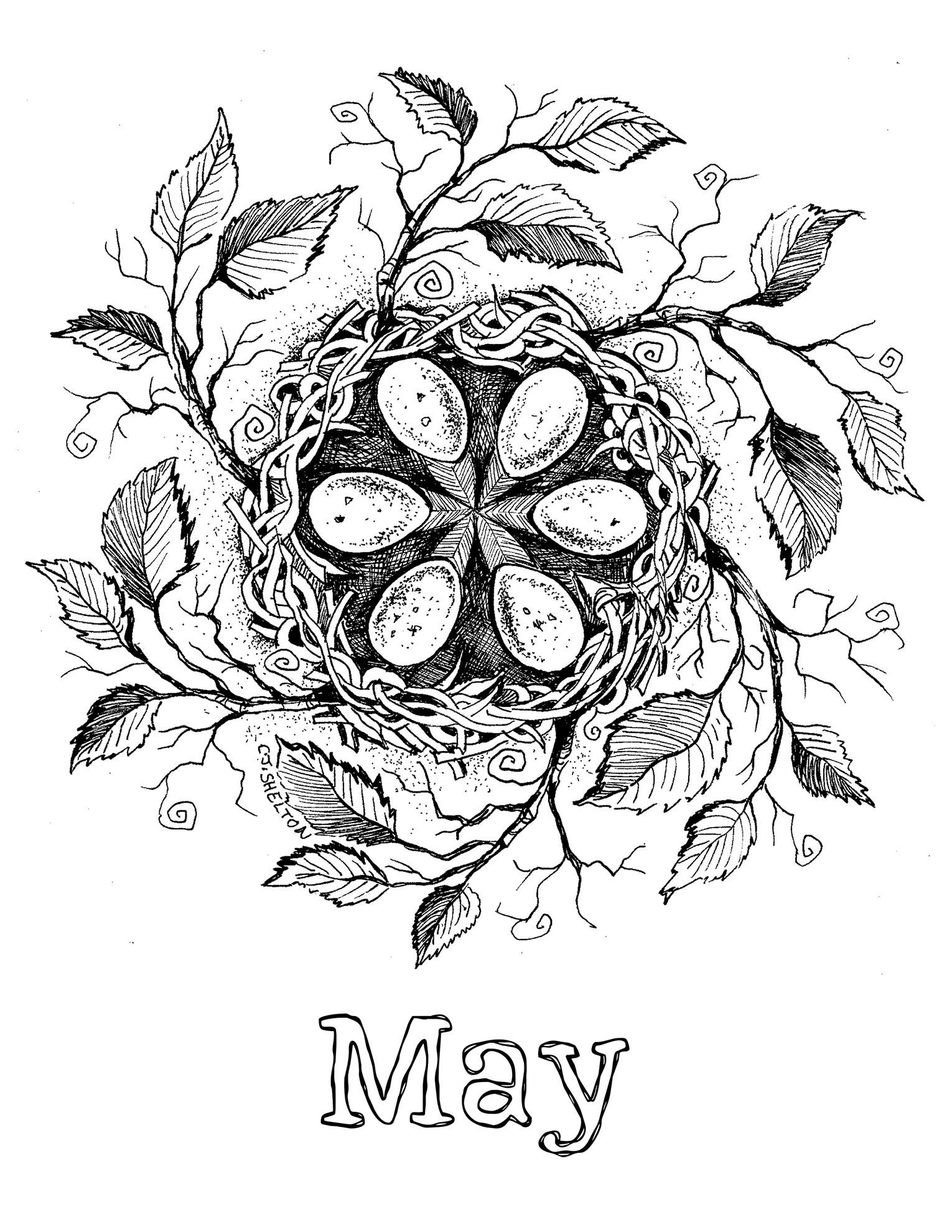 "May Mandala from ""Seeds of Life"" Calendar"