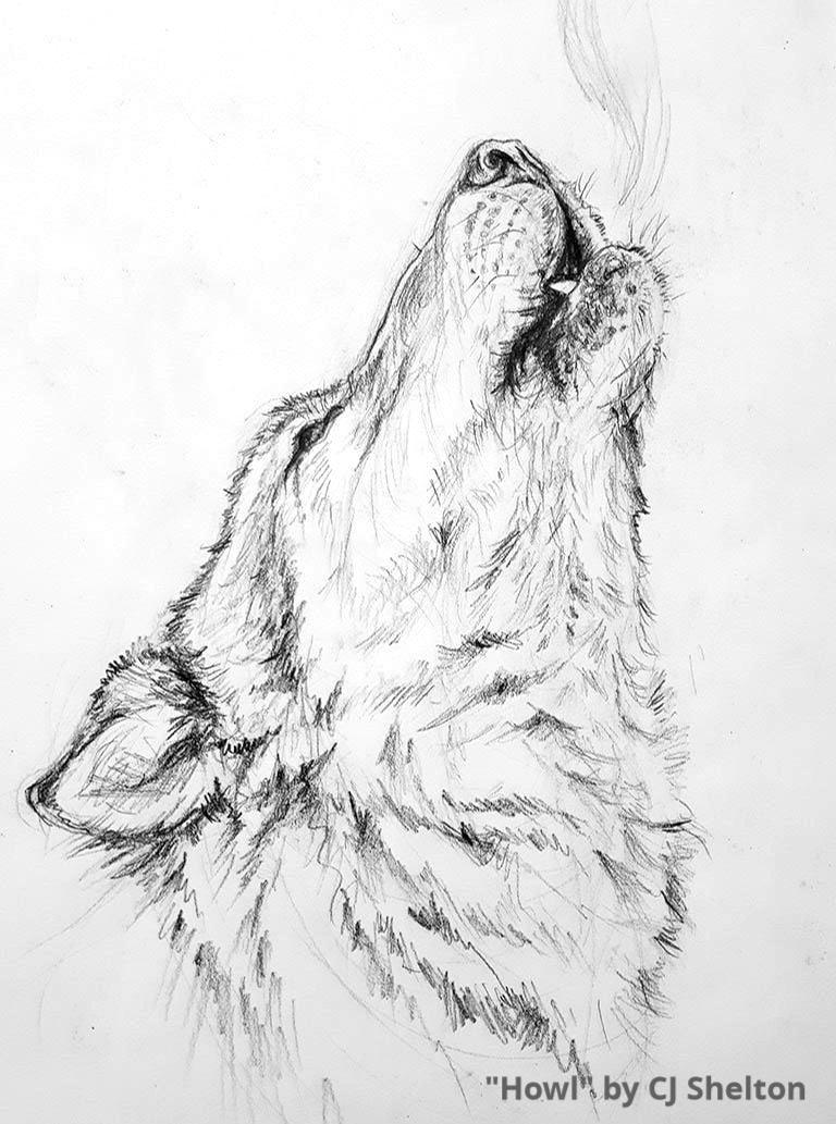 """Howl"" by CJ Shelton"