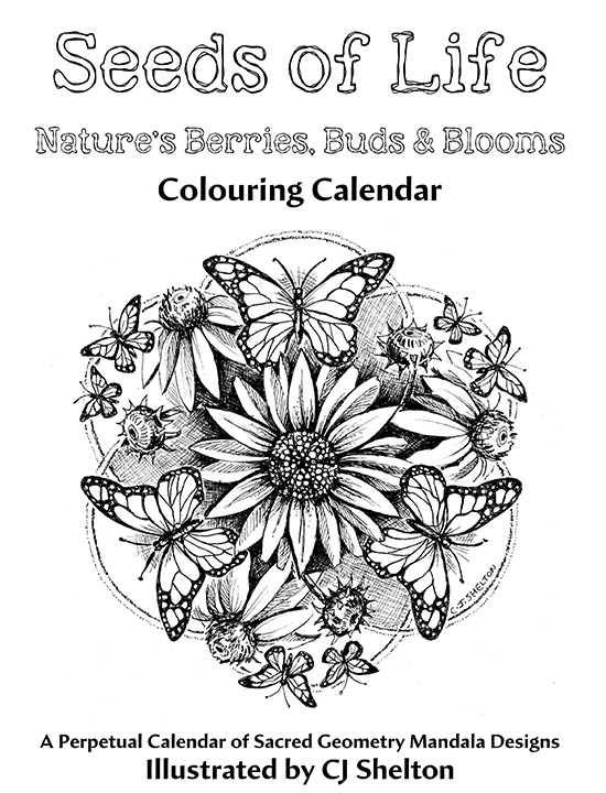 """Seeds of Life"" Colouring Calendar"