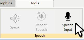 Speech Input Option