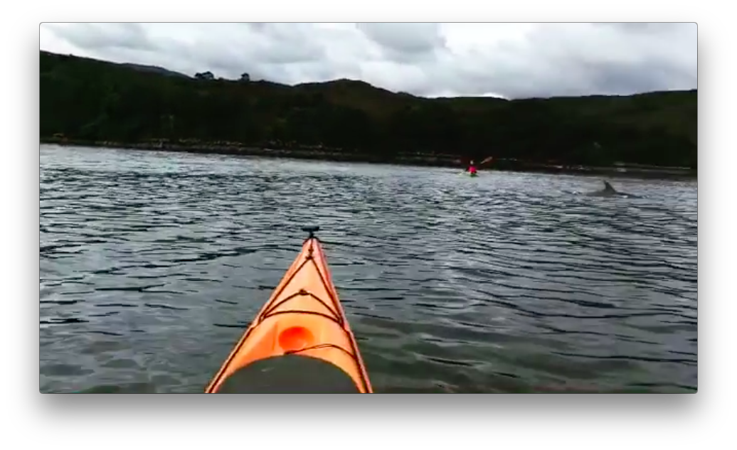 Shieldaig Kayaking