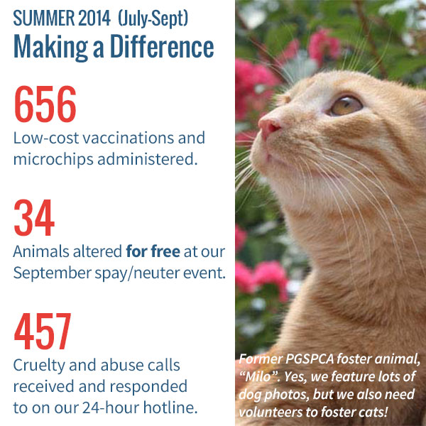 [Image] June 2014 - Making a Difference... 268 Low-cost vaccinations and microchips administered. 28 Animals altered at our June spay/neuter event. 146 Cruelty and abuse calls received and responded to on our 24-hour hotline.