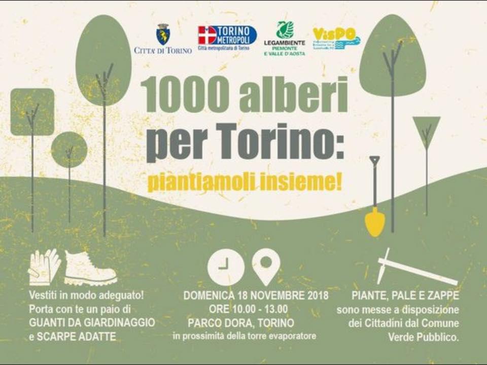 1000 alberi