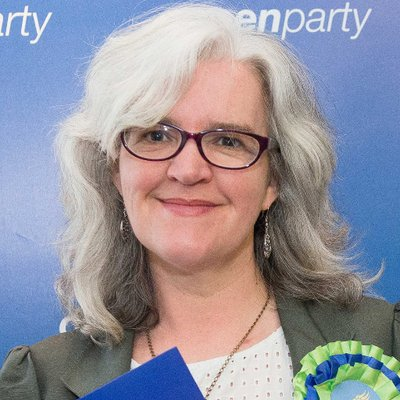 Green Party deputy leader to step down and study law in Scotland