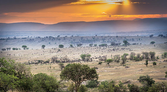 Legendary Expeditions great migration