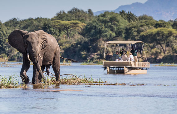Boat safari on the Zambezi River from Chiawa Camp