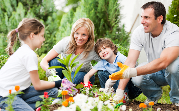 Image of a family of four planting flowers in their garden