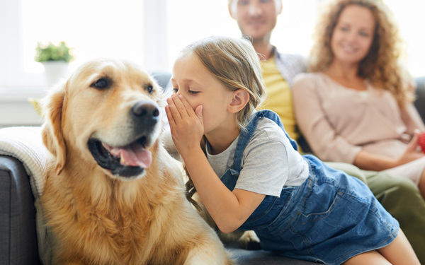 Image of a young girl whispering to her golden retriever