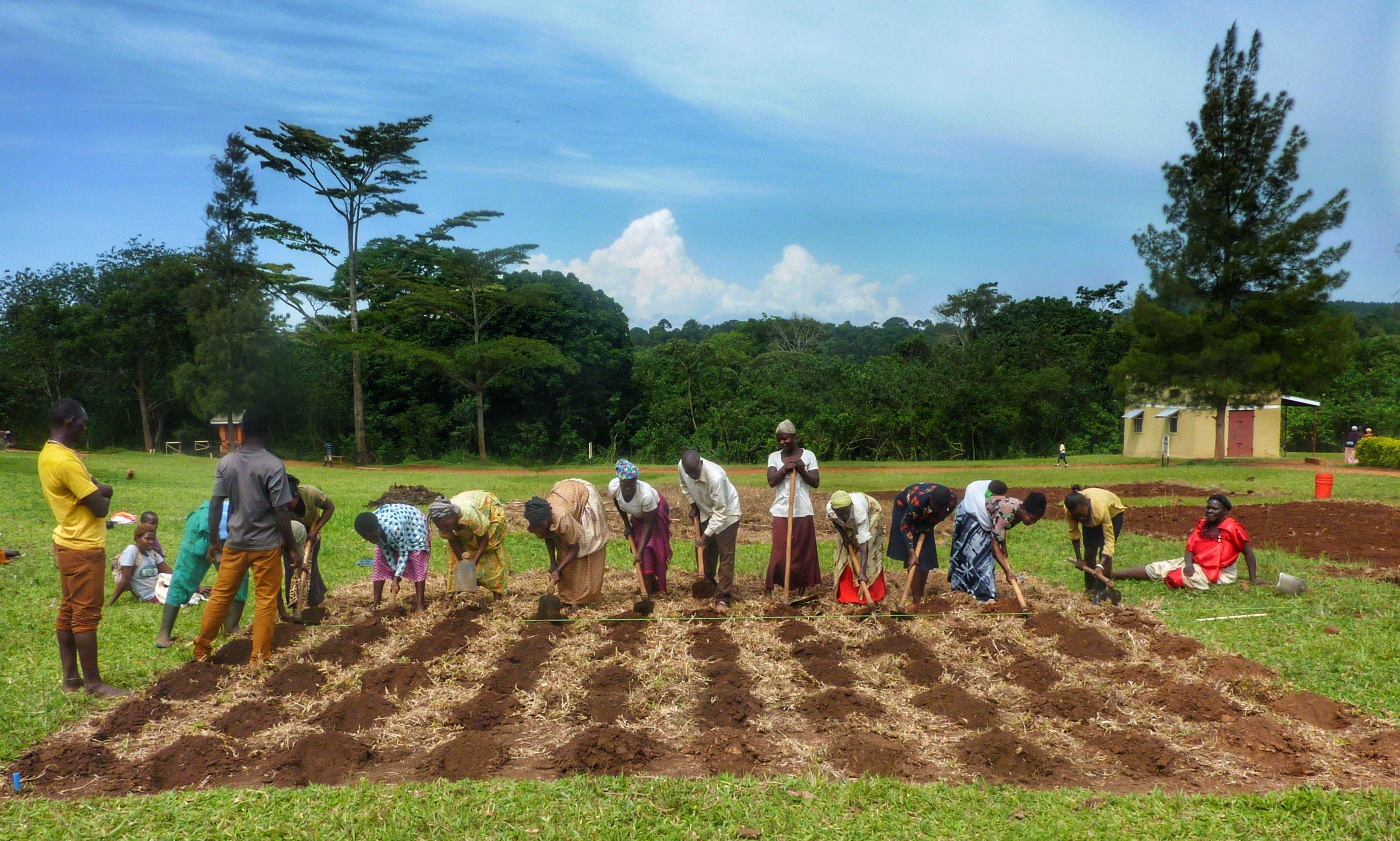 Farming God's Way Demonstration Gardens