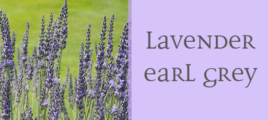 Buy loose leaf Lavender Earl Grey online at The Secret Garden Tea Company