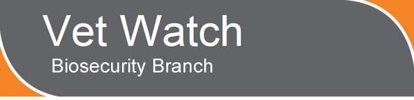 Vet Watch