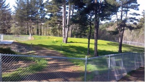 Photo: Eureka Dog Park