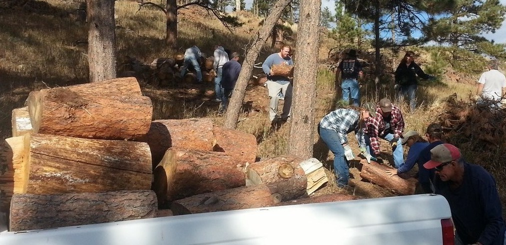 Firewood Program