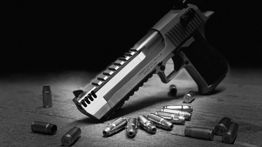 Magnum Research Introduces New 429 DE Pistol Cartridge