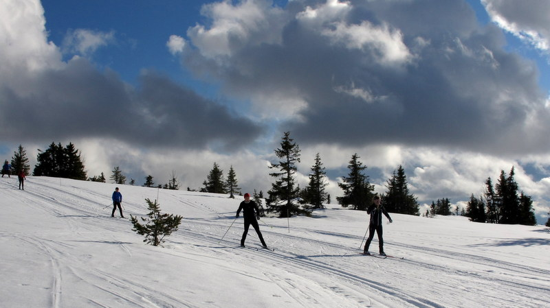 image: skiers near Nordseter