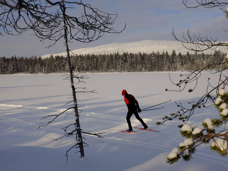 image: skier in Levi, Finland
