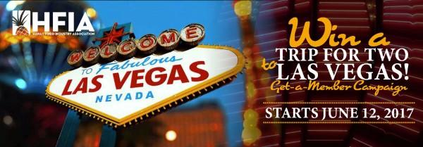 Vegas Promo Banner