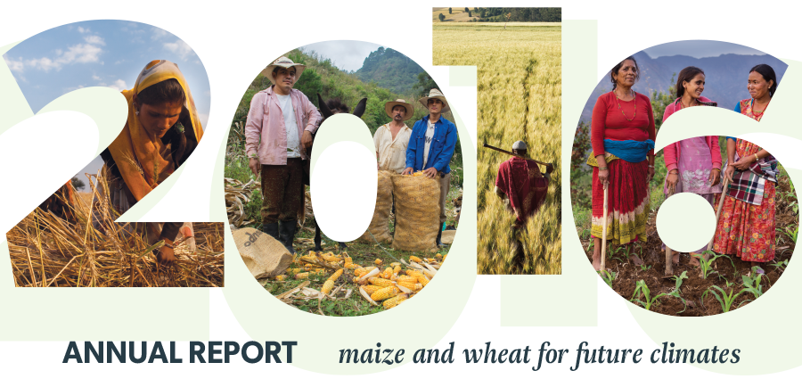 CIMMYT launches its new strategy