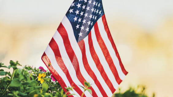 American flag planted in a bed of flowers.