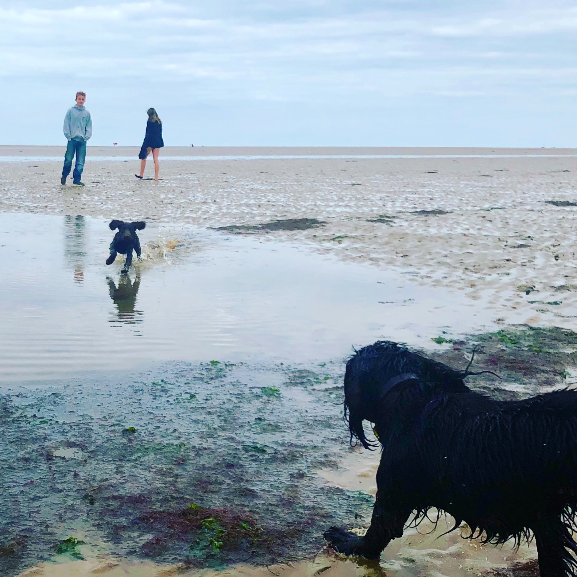 Twiggy's first trip to Brancaster beach