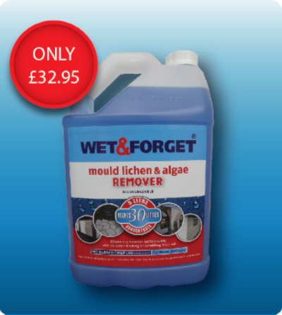 WET & FORGET MOULD LICHEN & ALGAE REMOVER
