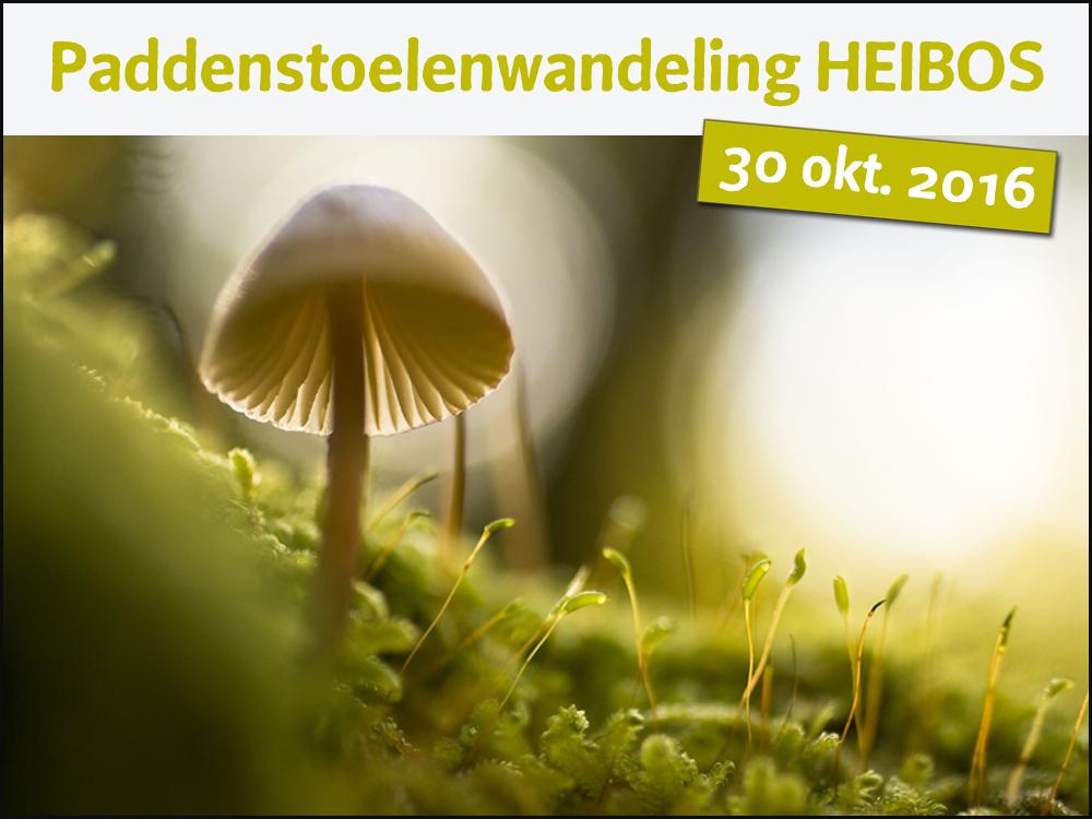 agenda paddenstoelenwandeling Heibos 2016