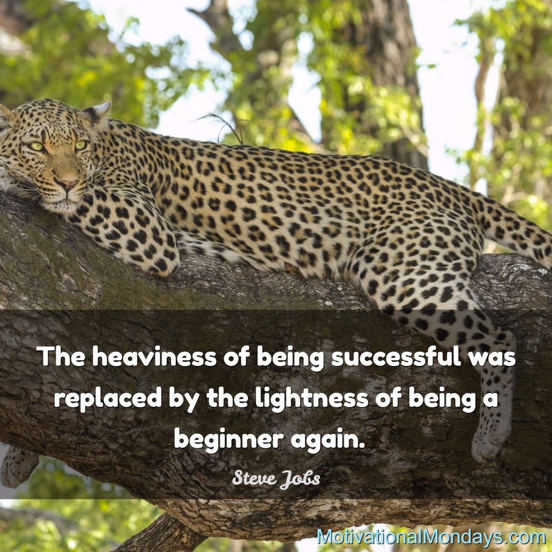 The heaviness of being successful was replaced by the lightness of being a beginner again.